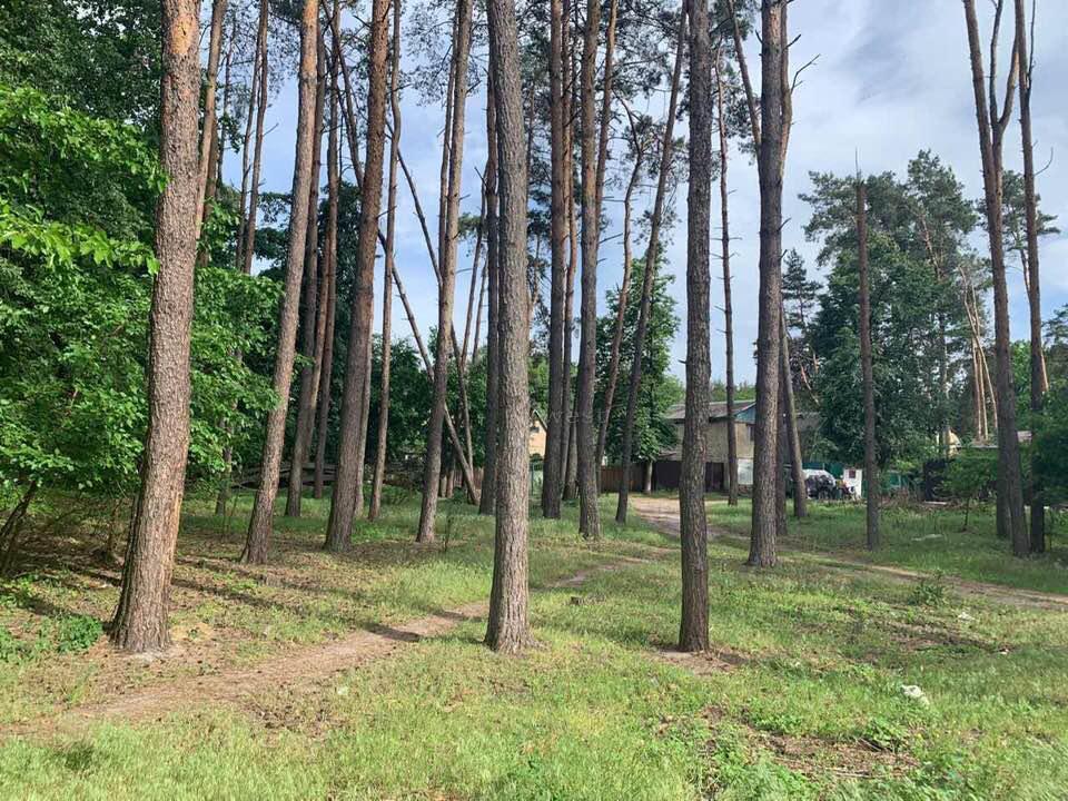 10 соток в Ирпене, в районе 9-10 линии, лес