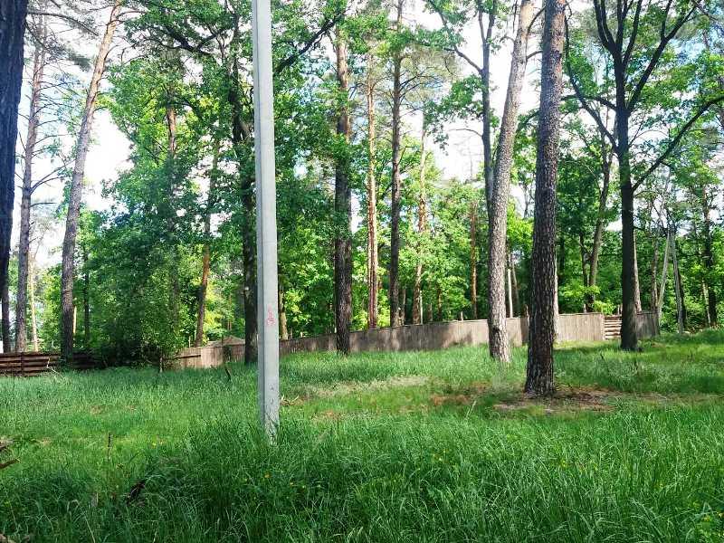 Ділянка в лісовій частині