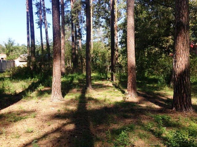 Ділянка в Лісовій Бучі